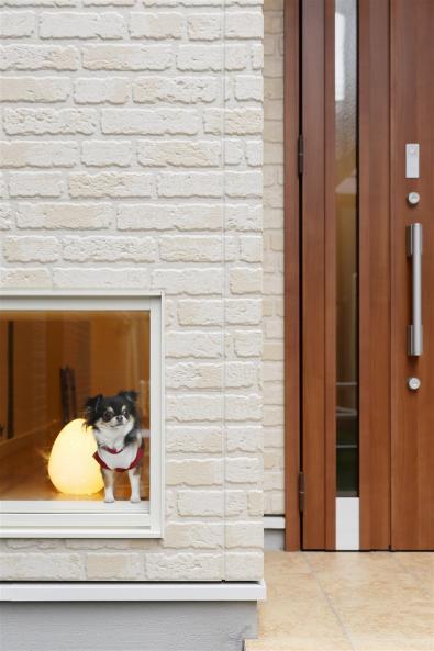 ペットと楽しく暮らせる家
